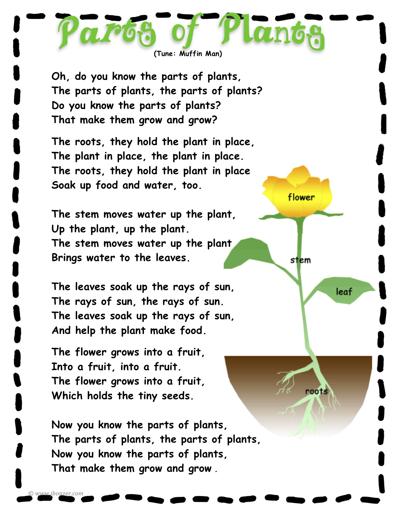 New Kindergarten Science LiveBinder – The Tiny Seed Worksheets